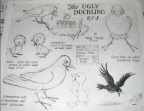 The ugli duckling - comparative sizes